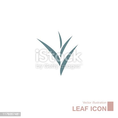 Vector drawn leaves. Isolated on white background.