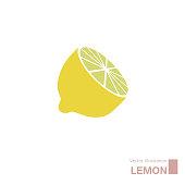 Vector drawn lemon. Isolated on white background.
