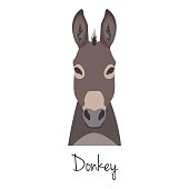 Vector dunkey grey head isolated. Flat style, cartoon object
