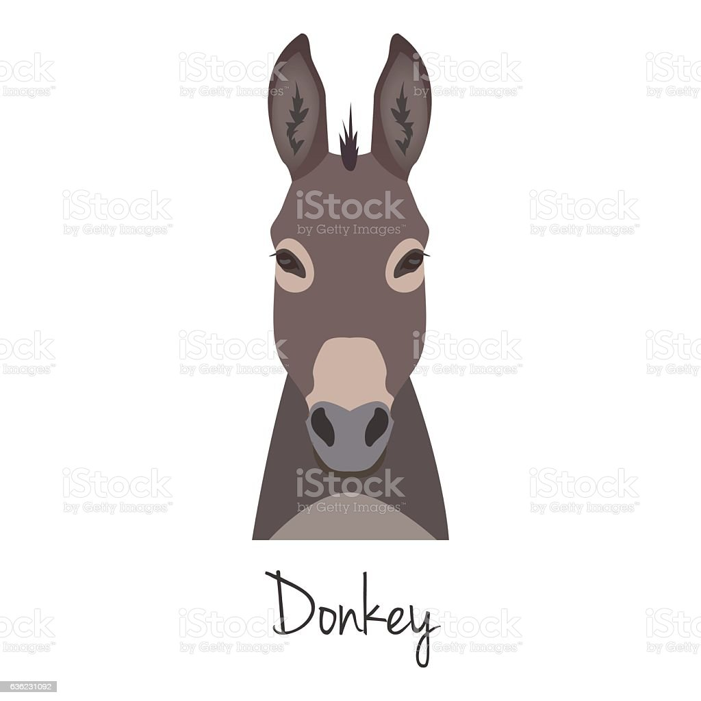 Vector dunkey grey head isolated. Flat style, cartoon object vector art illustration