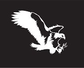 Black and white vector illustration of swooping eagle.