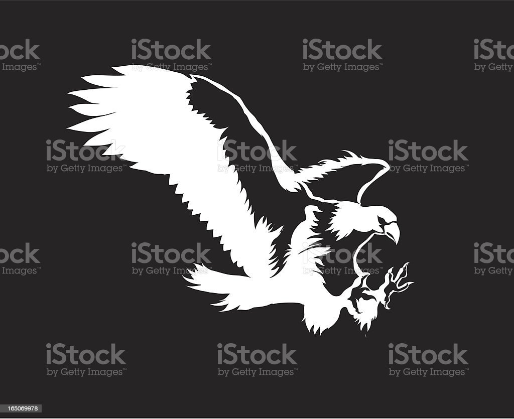 Vector eagle vector art illustration
