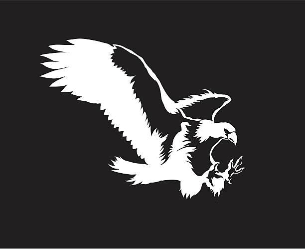 Vector eagle vector art illustration