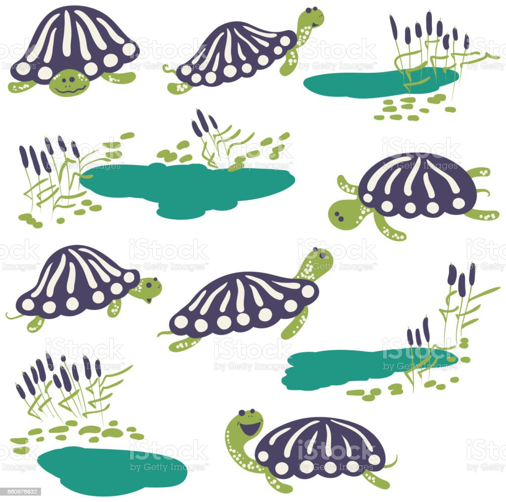 Vector earthen turtle and reeds with pond icon set vector art illustration