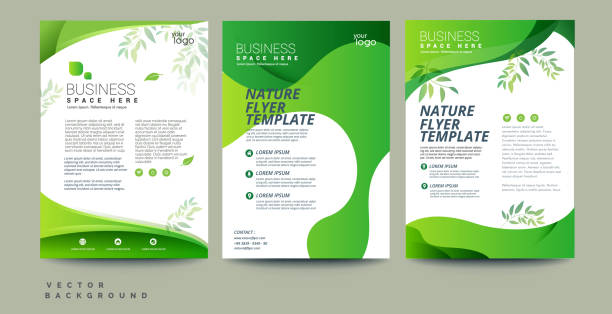 stockillustraties, clipart, cartoons en iconen met vector eco flyer, poster, brochure, tijdschrift cover sjabloon. moderne groene blad, milieu ontwerp. -vector - flyer
