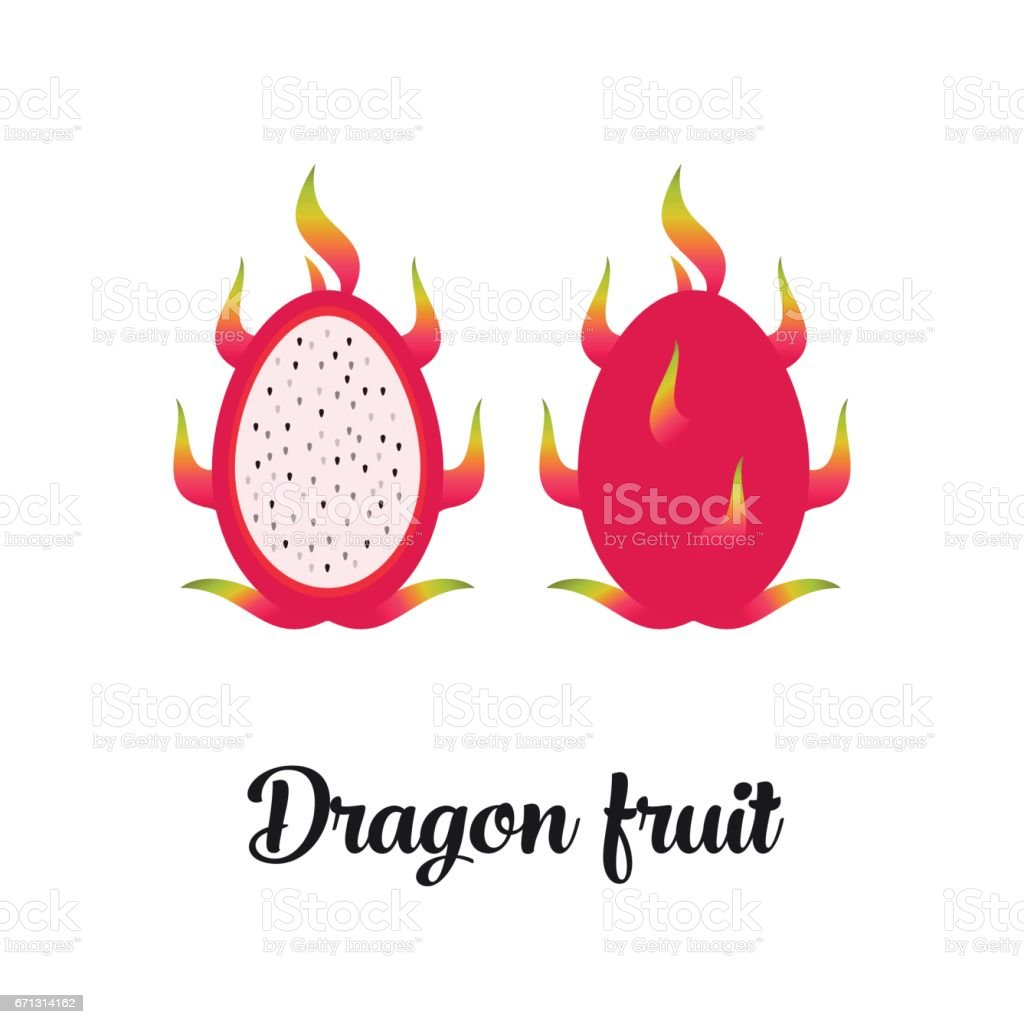 vector editable dragon fruit stock vector art 671314162 istock