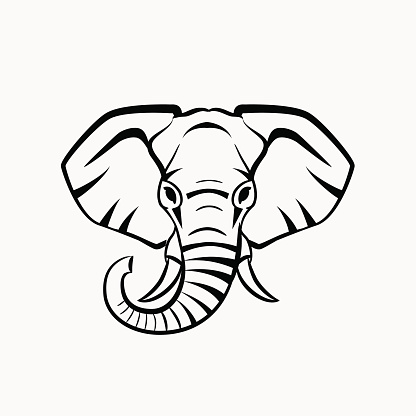 Vector Elephant Head Stock Illustration - Download Image Now