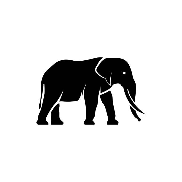 vector elephant silhouette view side for retro icons, emblems, badges, labels template vintage design element. isolated on white background - elephant stock illustrations