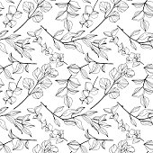 Vector Eucalyptus tree leaves jungle botanical. Black and white engraved ink art. Seamless background pattern. Fabric wallpaper print texture.