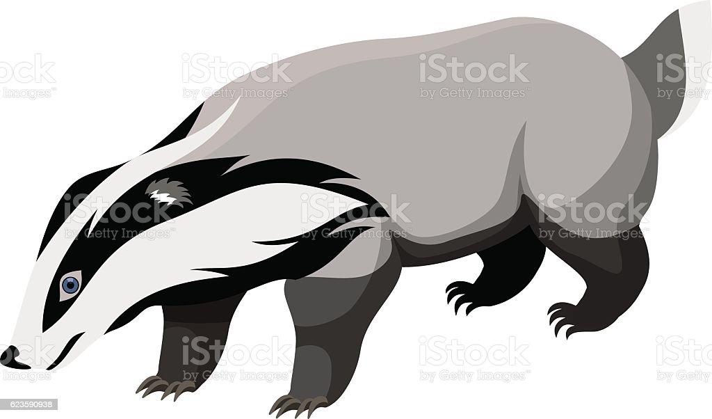 vector European badger vector art illustration