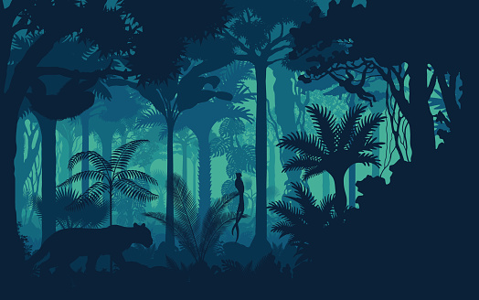 Vector evening tropical rainforest Jungle background with jaguar, sloth, monkey and qetzal
