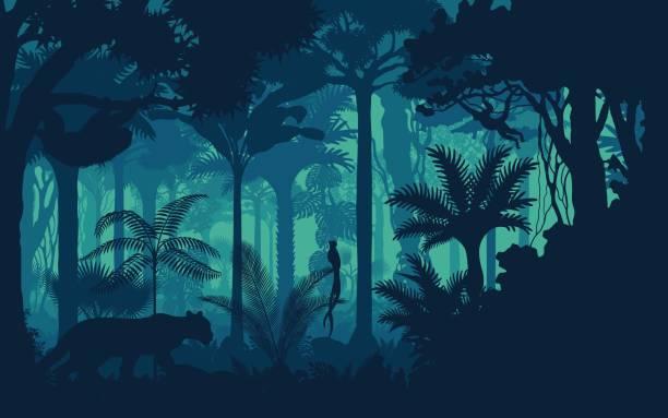 illustrazioni stock, clip art, cartoni animati e icone di tendenza di foresta pluviale tropicale serale vettoriale sfondo giungla con giaguaro, bradipo, scimmia e qetzal - fauna selvatica