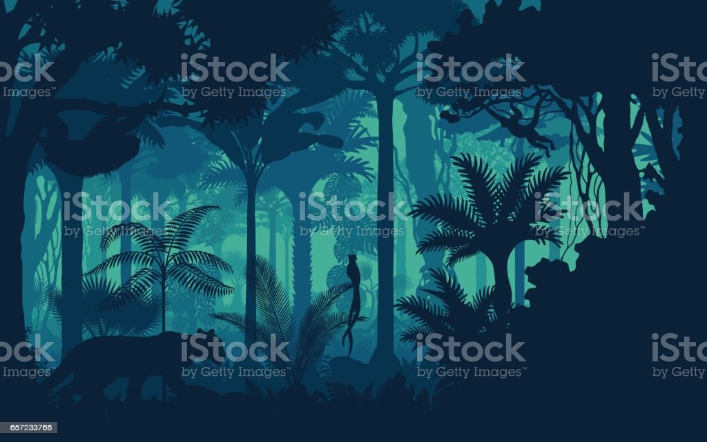 Vector evening tropical rainforest Jungle background with jaguar, sloth, monkey and qetzal vector art illustration