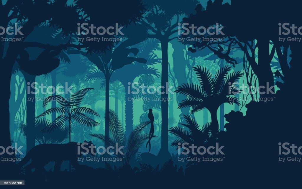 Vector fondo de selva de bosque tropical lluvioso de noche con jaguar, el perezoso, el mono y el qetzal - ilustración de arte vectorial