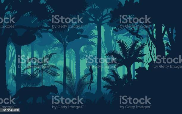 Vector Evening Tropical Rainforest Jungle Background With Jaguar Sloth Monkey And Qetzal Stock Illustration - Download Image Now