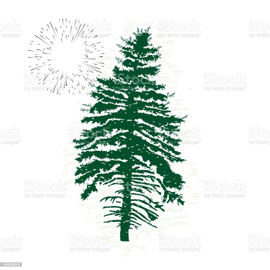 Ilustración de Silueta De Hoja Perenne De Vector De árbol De Pino Y ...