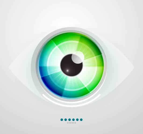 вектор глаз - глаз человека stock illustrations