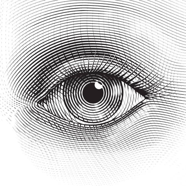 Vector eye Vector human eye in engraved style. etching stock illustrations