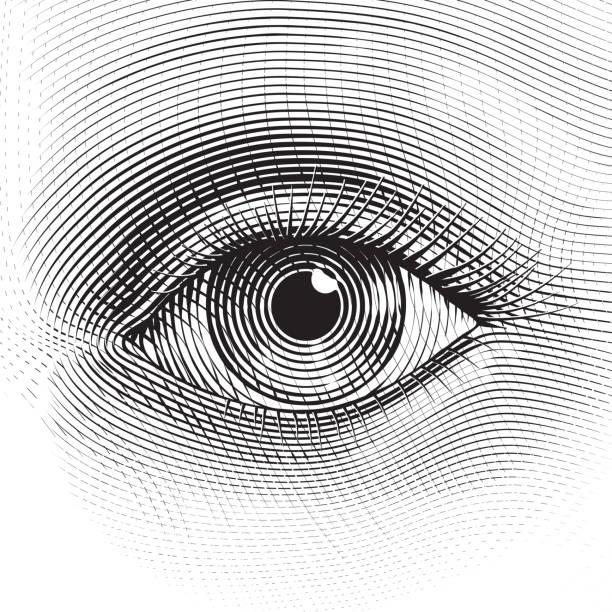 bildbanksillustrationer, clip art samt tecknat material och ikoner med vector eye - närbild