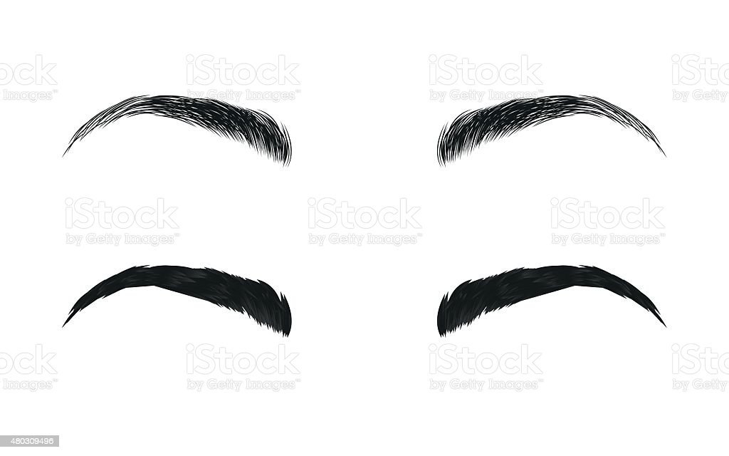 Vector Eyebrows Realistic And Cartoon Style Stock Vector Art More