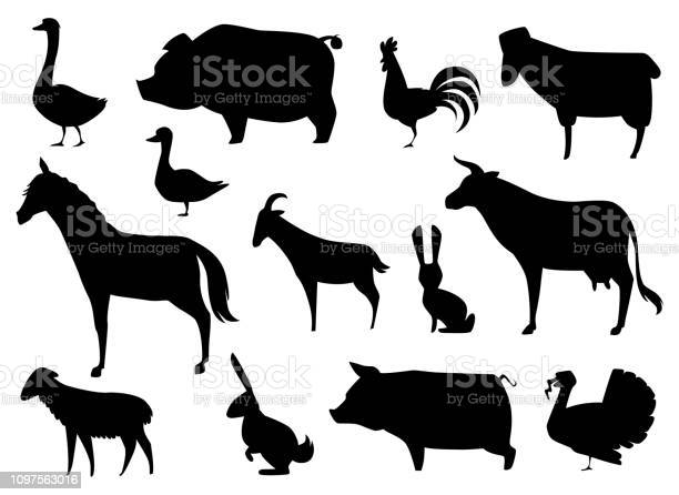 Vector farm animals silhouettes isolated on white vector id1097563016?b=1&k=6&m=1097563016&s=612x612&h=7pgujwcuojbhj3jsco3qgqiou hvdlhck2db7zw fo4=