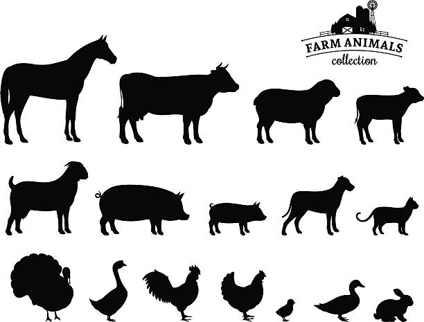 vector farm animals silhouettes isolated on white - farm animals stock illustrations, clip art, cartoons, & icons