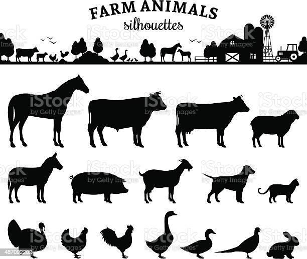 Vector farm animals silhouettes isolated on white vector id487092202?b=1&k=6&m=487092202&s=612x612&h=zoned3zj vi jbon8t4lz05ucqpm94wdo saj7dput4=