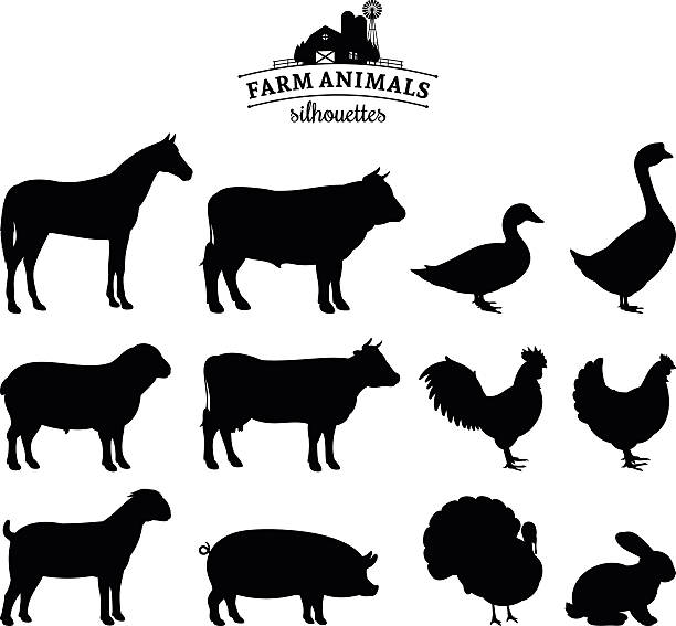 stockillustraties, clipart, cartoons en iconen met vector farm animals silhouettes isolated on white - pig farm