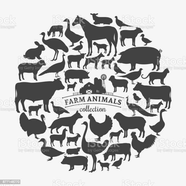 Vector farm animals silhouettes vector id877148270?b=1&k=6&m=877148270&s=612x612&h=s7pfp2tsnzry6ahtptbsqlkj npaa5amo79kxmmlvjw=