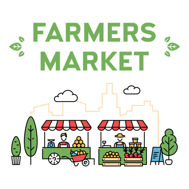 Vector Farmers Market Stall Illustration Vector farmers market illustration. Line fruit and vegetable shop banner template. Local farm food stand background. Flat greengrocer store business with organic eco bio products farmer's market stock illustrations