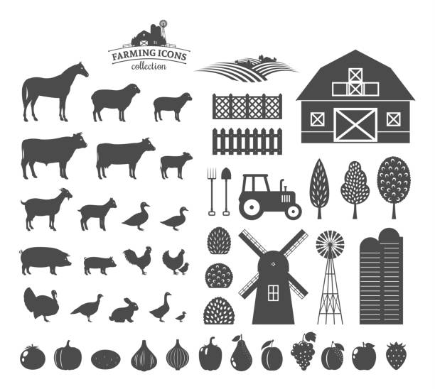 Vector farming icons and design elements vector art illustration