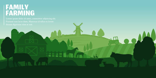 Vector farming landscape Vector farming illustration. Rural landscape, farm animals and design elements poultry stock illustrations