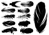 Detailed black vector bird feather silhouette illustrations