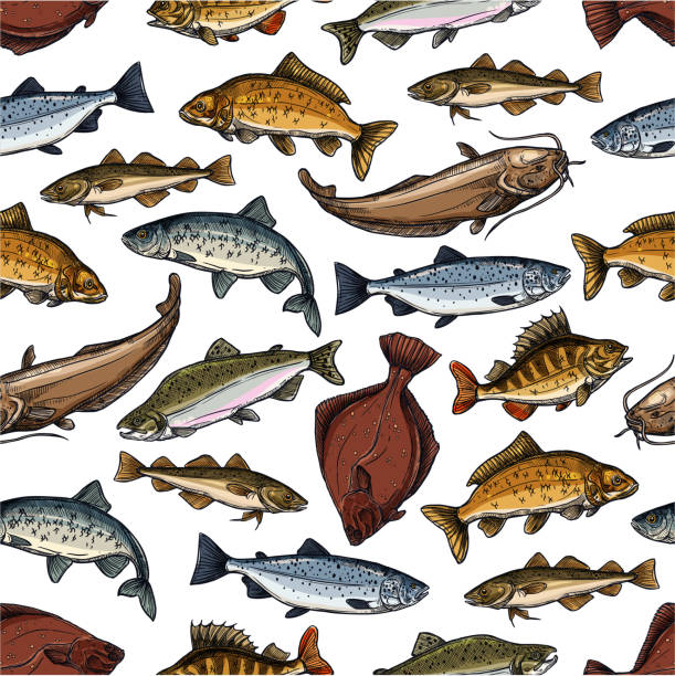 Vector fish pattern of seamless sea ocean fishes Fish seamless pattern of sea or ocean fishes. Vector tile of marlin, flounder or salmon and trout, pike or perch and pikeperch, tuna or bream and herring sprat, Fisherman catch carp, eel or navaga freshwater fish stock illustrations