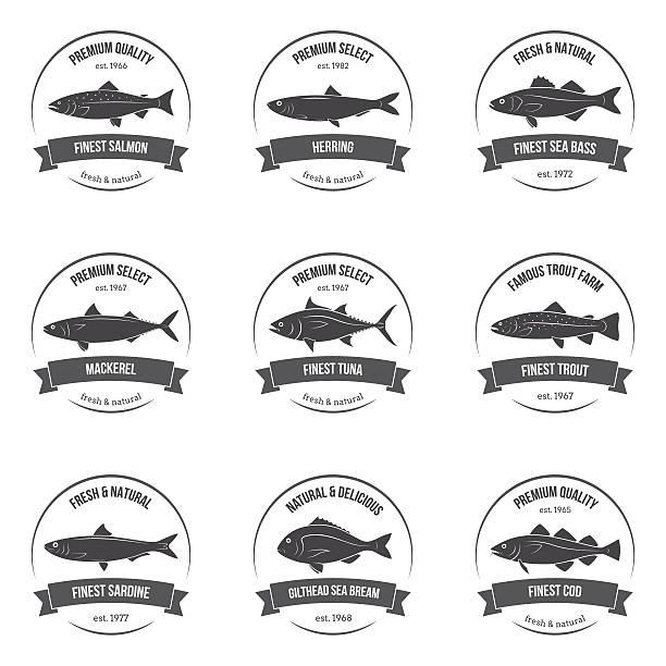 Vector fish silhouettes, labels, emblems. vector art illustration