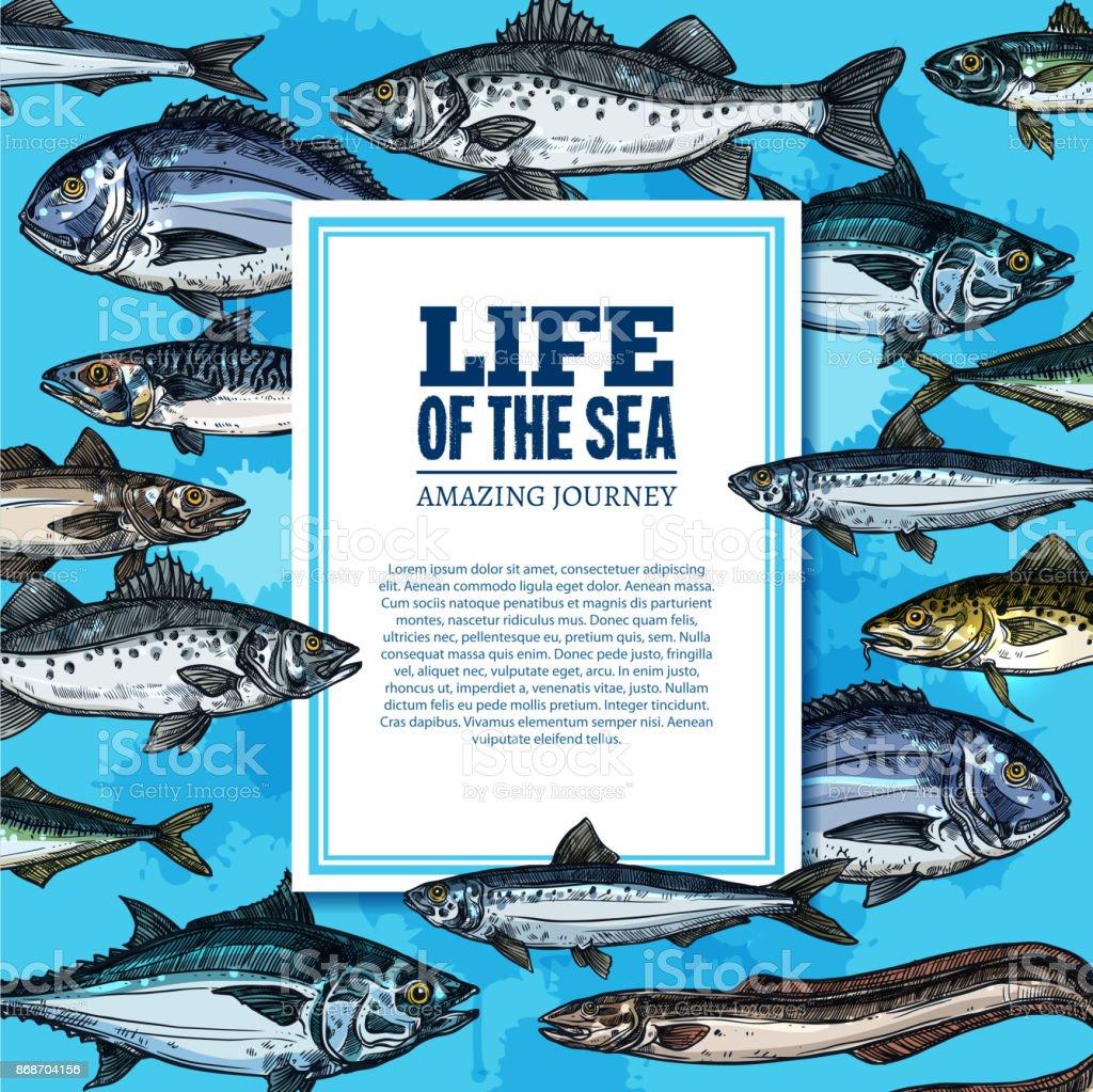 Vector fishes sketch poster sea life ocean fish vector art illustration