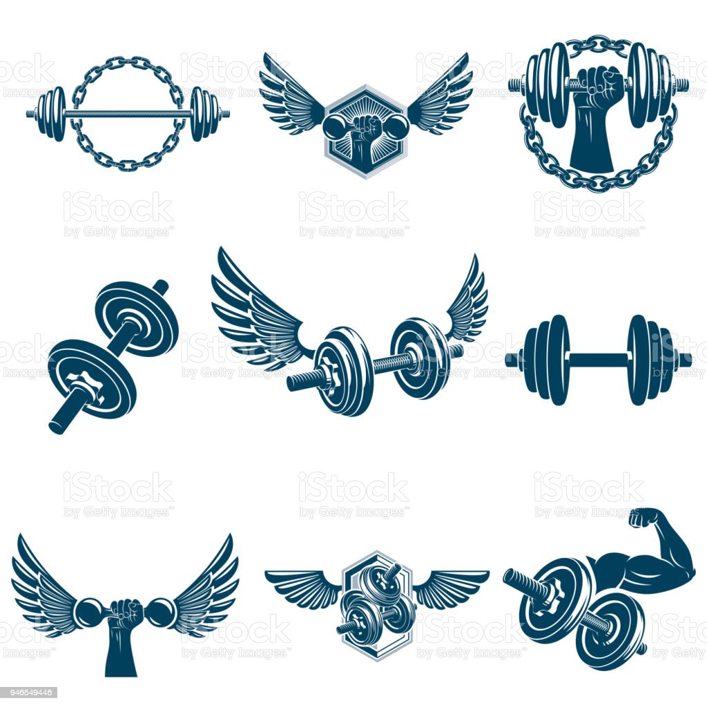 Vector fitness workout theme illustrations collection created with dumbbells, barbells and disc weights sport equipment. Muscular sportsman body silhouette. vector art illustration