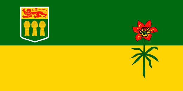 ilustrações, clipart, desenhos animados e ícones de vector bandeira da província de saskatchewan, canadá. saskatoon, regina - bandeira union jack
