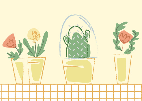 Vector flat abstract illustration with cactus under glass flask, separate from other plants.