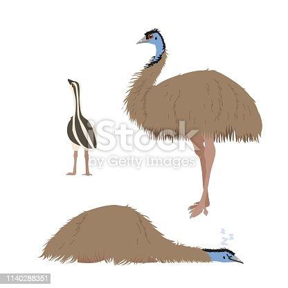 vector flat cartoon animal clip art ostrich emu bird