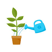 vector flat cartoon green plant in the ceramic pot and blue watering can pouring it. Isolated illustration on a white background. Daily routine concept