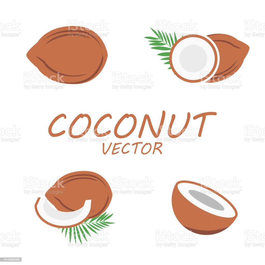 Vector flat coconut icons set vector art illustration