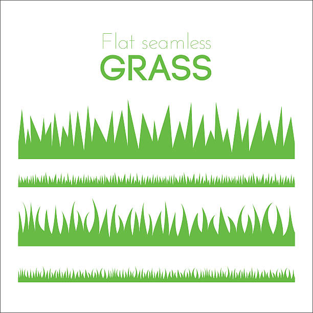 vector flat grass set isolated on white background - grass stock illustrations