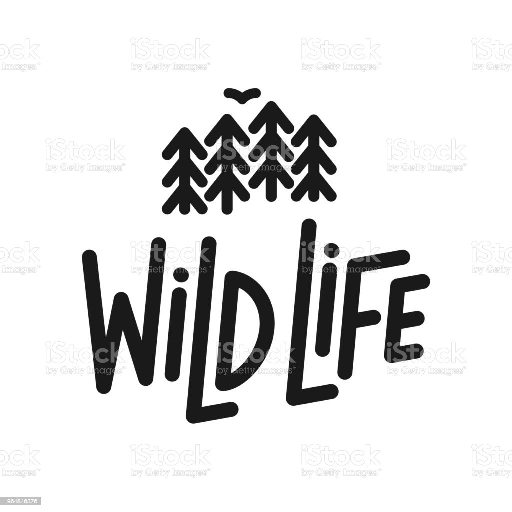 Vector flat illustration: Line typography lettering composition of Wild Life with silhouette of pine forest and bird. royalty-free vector flat illustration line typography lettering composition of wild life with silhouette of pine forest and bird stock vector art & more images of animal wildlife