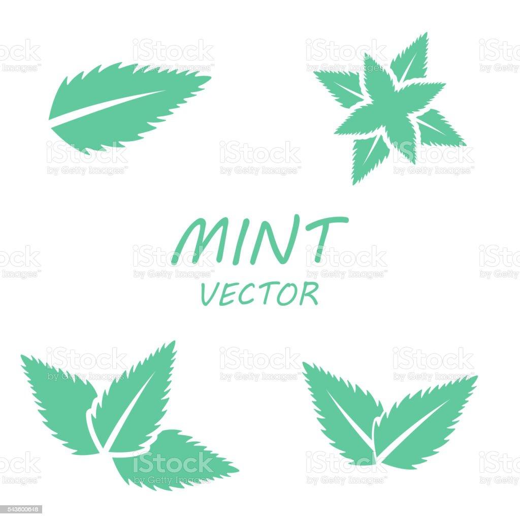 Vector flat mint icons set vector art illustration
