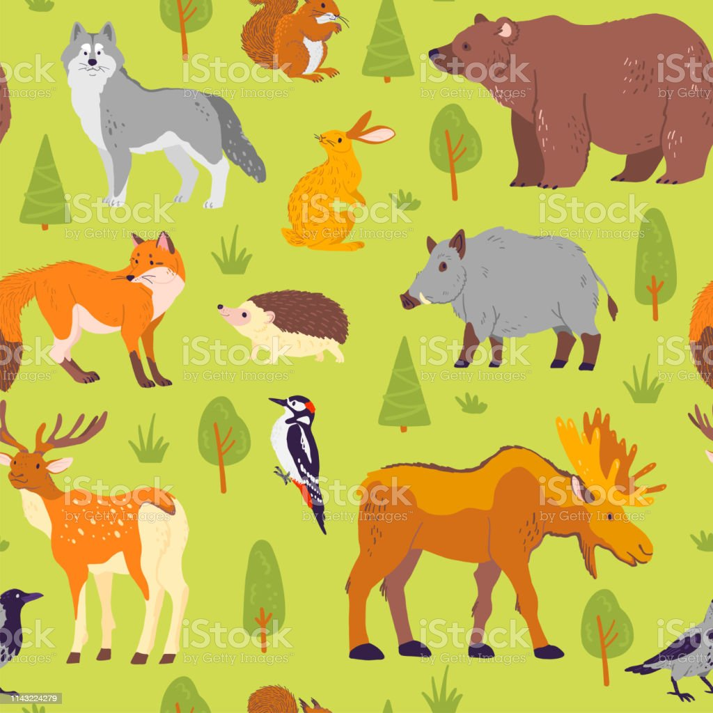 Vector flat seamless pattern with wild forest animals, birds and...