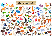 Vector flat style big set of animals isolated on white background. Collection of vector cartoon creatures from doffernt continents. Tropical and exotic wild animal character