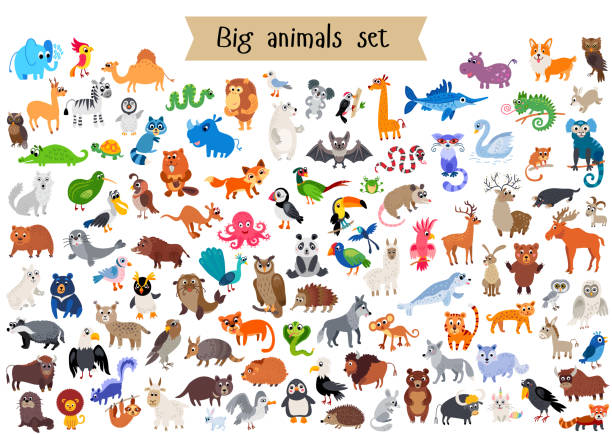 Vector flat style big set of animals isolated Vector flat style big set of animals isolated on white background. Collection of vector cartoon creatures from doffernt continents. Tropical and exotic wild animal character animal stock illustrations