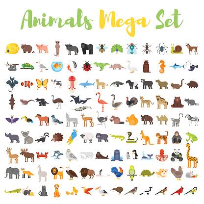 Vector flat style big set of animals.