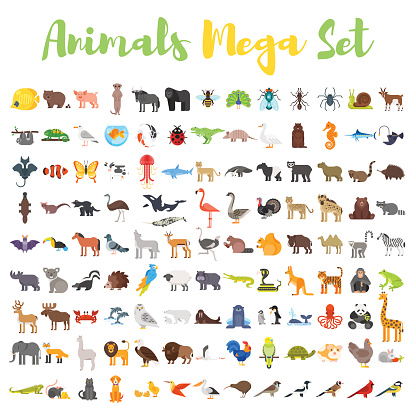 Vector flat style big set of animals. clipart